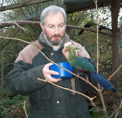 David feeding a Schalow's Turaco